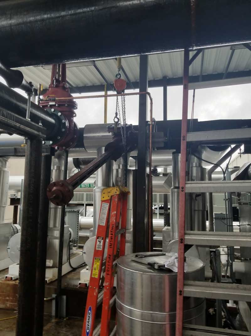 """14"""" Linestop Front View on Chilled Water in Tampa, Florida"""